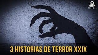3 Historias De Terror Vol. XXIX