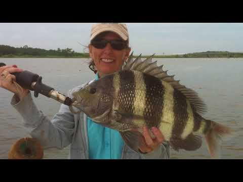 Hot Bites Fishing Report Dec. 4 | Visit Jacksonville