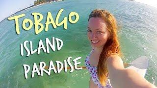 TOBAGO ISLAND PARADISE