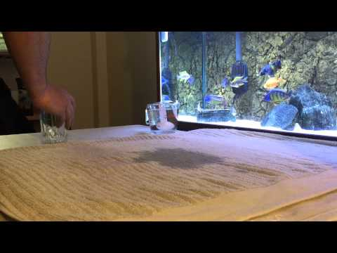 Treating African Cichlid With Bloat/internal Parasites - Force Feeding Epsom Salt/water