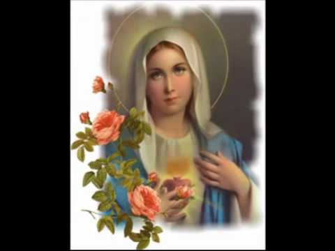 MOTHER MARY SONGS 5   TELUGU