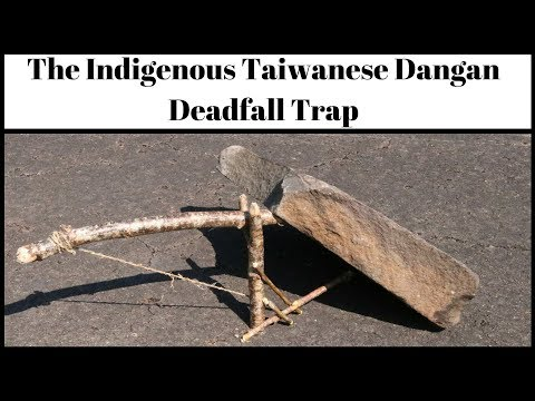 Catching A Rat With The Indigenous Taiwanese Dangan Survival Trap. Mousetrap Monday