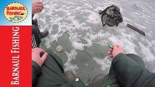 ЗАКРЫЛ СЕЗОН!! ЗИМНЯЯ РЫБАЛКА (Barnaul fishing)
