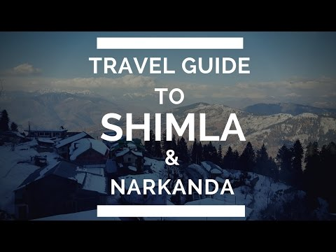 Travel guide to Shimla and Narkanda (Snowy paradise)