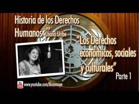 11. Los Derechos sociales, económicos y culturales. Parte 1. (Historia de los Derechos Humanos)