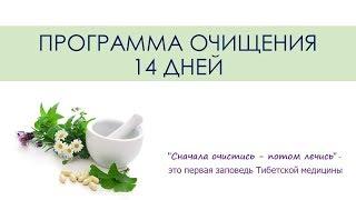 Ольга Колтунова  Детокс программа