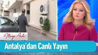 Antalya'dan canlı yayın... - Müge Anlı ile Tatlı Sert 22 Şubat 2019