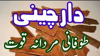 Dar cheeni Sy Mardana Kamzori Ka Zabardast ilag دارچینی مردانہ طاقت کا راز In Urdu Hindi youtube