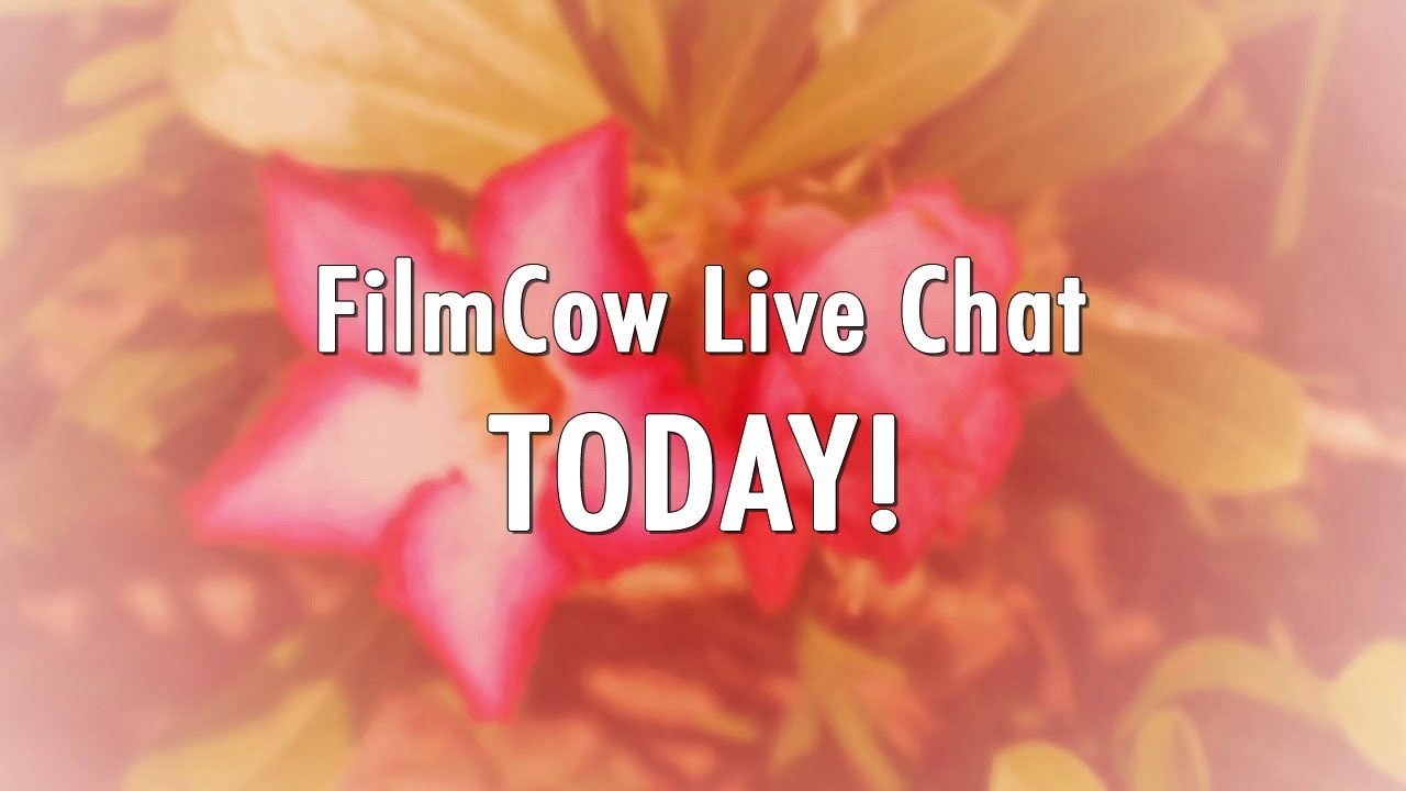 FilmCow Live Chat TODAY! - We're going to be chatting live on YouTube from 1-3 PM EST!