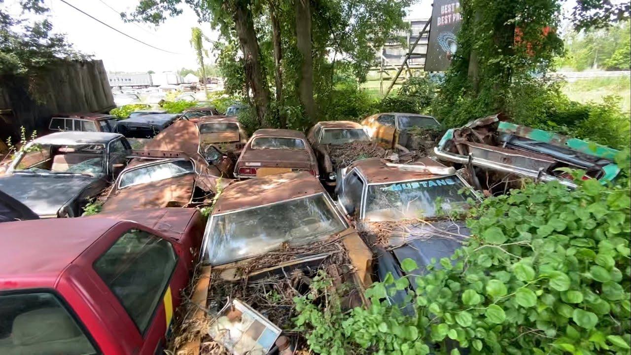 😳В одной из заброшенных машин нашел отрезанную голову клоуна🤡 забытые BMW Mercedes Mustang Camaro