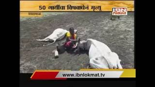 IBN Lokmat GAVAKADCHYA BATMYA 28 May 2016 (Full News Bulletin)