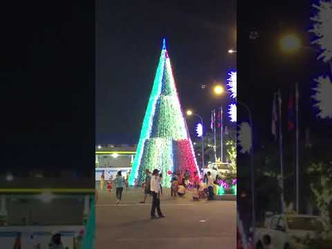 150 FT Light Up Display Christmas Tree with Candy Star and ...