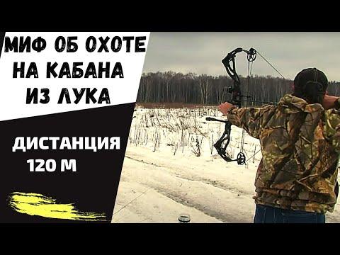 Миф об охоте на кабана из лука на 120 метров
