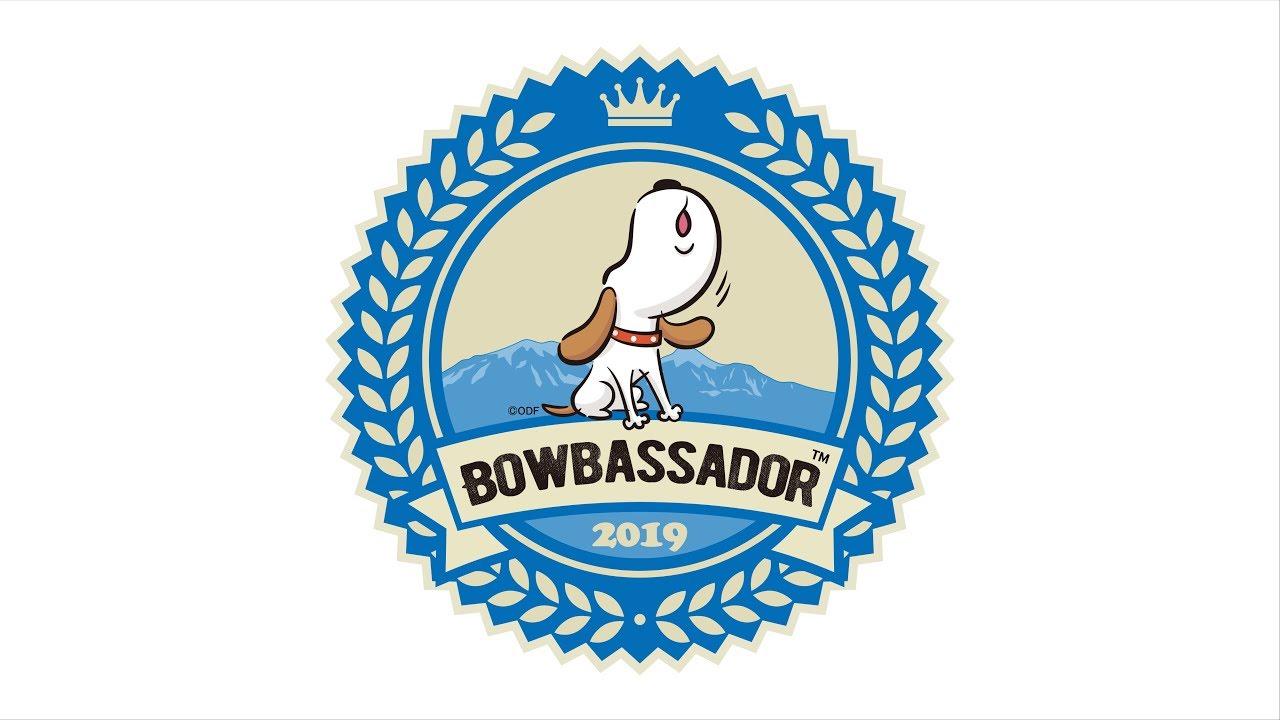 【2019】バウバサダー任命式&プレイベント < アウトドアドッグフェスタin八ヶ岳 >