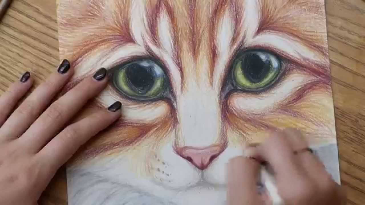 Kitty Cat With Big Eyes Colored Pencil Drawing Full Version Youtube
