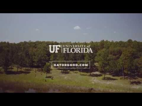 Gator Good – Biodiversity and the Earth