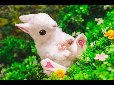 Baby Bunny Art Doll Tutorial