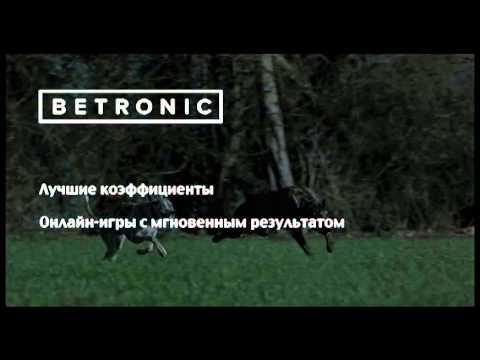 betronic букмекерская контора