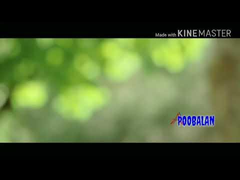 Lesa Lesa  Tamil Song