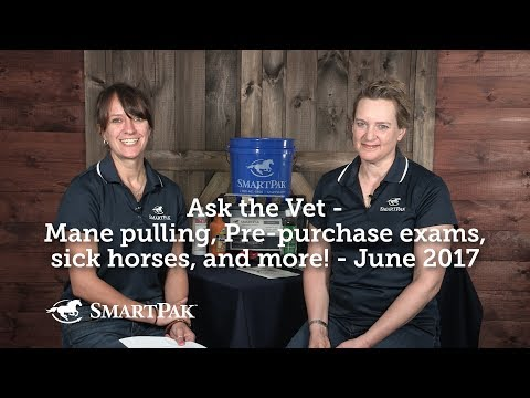 Ask the Vet - Mane pulling, pre-purchase exams, sick horses, and more! - June 2017