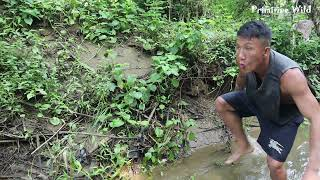 Primitive Wild: Ethnic Girl Meet Catfish Catching Fish With Eggs - Find Fish Catch Catfish