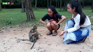 two beautiful girls playing with monkey funny and baby monkey eating banana on the tree