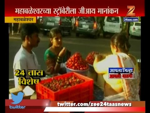 Mahabaleshwar | Strawberry Festival