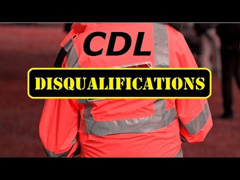 sec.-1.3-cdl-disqualifications---cdl-manual---general-knowledge
