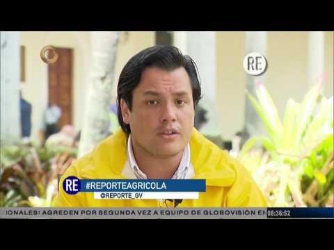 Reporte Estelar: Situación de la producción nacional agrícola en Venezuela
