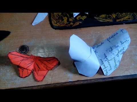 Paper Butterfly__ Paper Craft