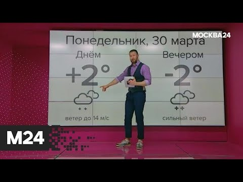 """""""Погода"""": резкое похолодание пришло в столицу - Москва 24"""