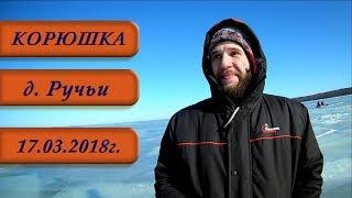 д. Ручьи  Корюшка  Зимняя рыбалка