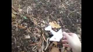 """AXEL I"" paper biplane: flight test."