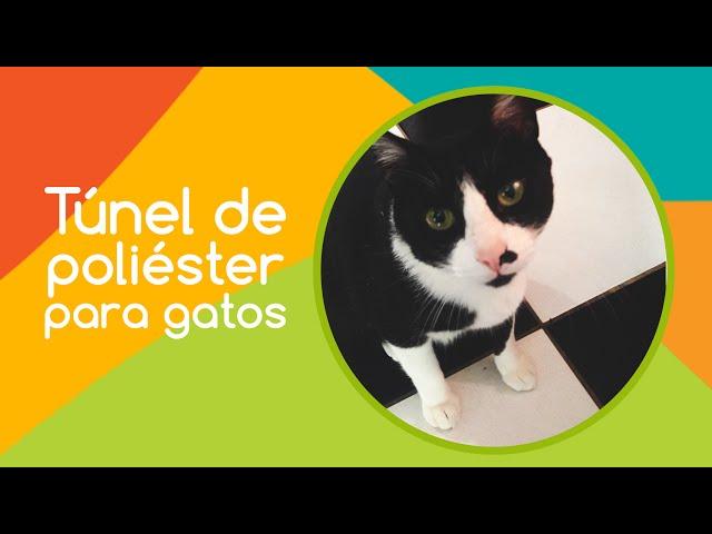 Túnel de poliéster para gatos - Savana Pet