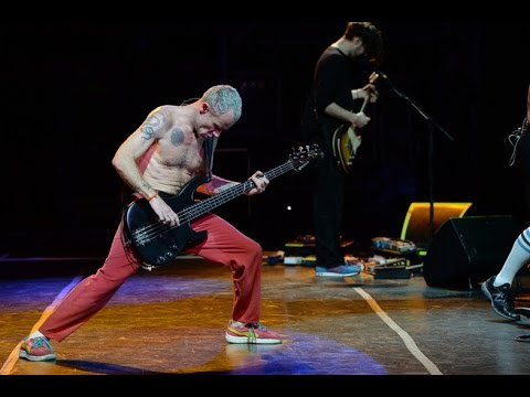 HQ Red Hot Chili Peppers  Cant Stop Lollapalooza Argentina 2014