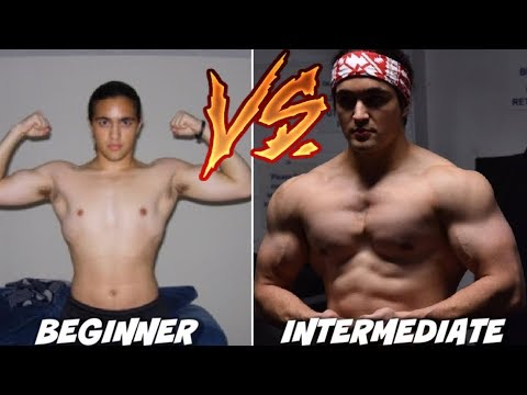 Beginner VS Intermediate Lifters: How They Should Train Differently