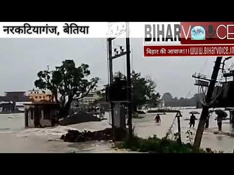 बेतिया के नरकटियागंज शहर में घुसा पानी   मोतिहारी, गोपलगंज, अररिया, पूर्णिया   Flood in Bihar