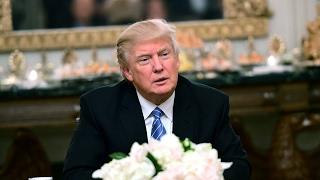 Trump claims voter fraud cost him popular vote
