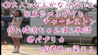 猫屋敷ひらり公式ホームページ nekohira1020.wixsite.com/neko222 Twitt...