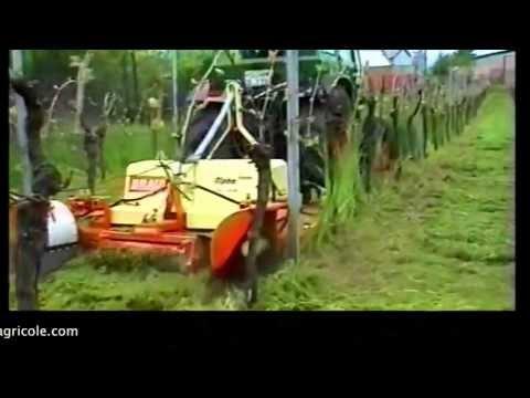 Tagliaerba vigneto alpha sensor braun az macchine a for Di raimondo macchine agricole