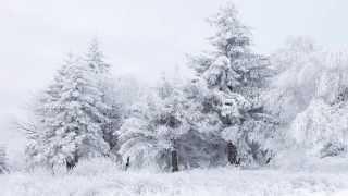 Marina Devyatova - Oy Sneg Snezkhok / Марина Девятова – Ой, снег, снежок