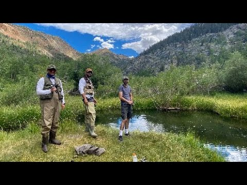 Fishing Trip In The Eastern Sierra (Bishop CA 2020)