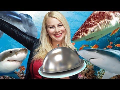 Je cuisine pour les Requins ♡ Virginie fait sa cuisine