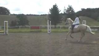 Me And Sherbet 55cm Course!