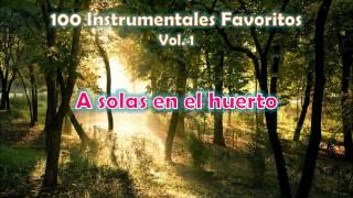 100 Instrumentales Favoritos vol. 1 - 011 A solas en el huerto