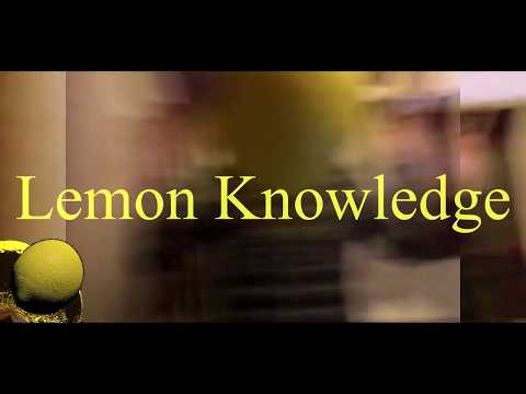 Lemon Knowledge: the realisation of all things