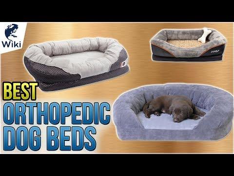 10-best-orthopedic-dog-beds-2018