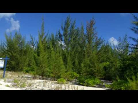 Turks and Caicos Island For Sale 1