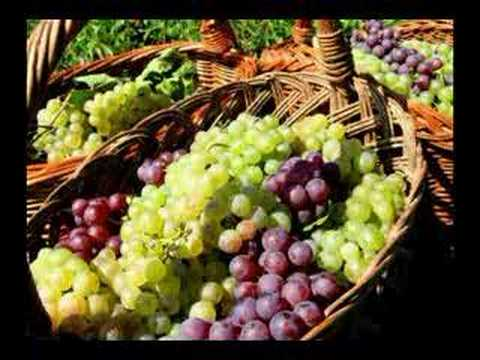 Bulgarian Arts and Crafts III - Wine