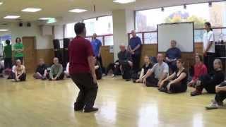 chen xiao wang 2014 london uk seminar